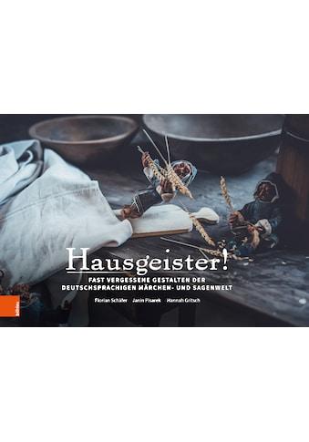 Buch »Hausgeister / Florian Schäfer, Janin Pisarek, Hannah Gritsch« kaufen