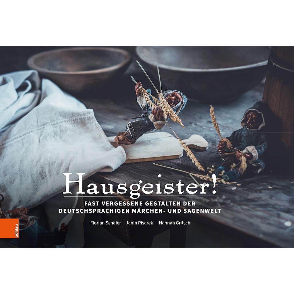 Buch »Hausgeister / Florian Schäfer, Janin Pisarek, Hannah Gritsch«