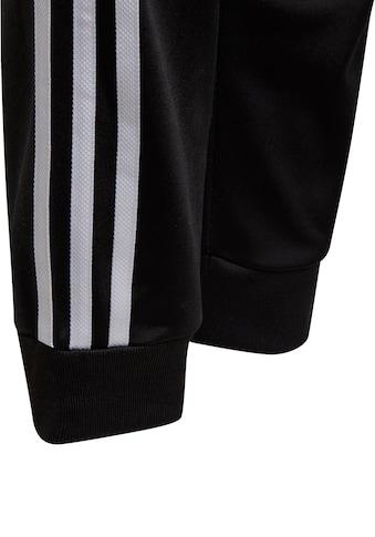 adidas Originals Trainingshose »SUPERSTAR TRACKPANT« kaufen
