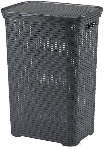 kela Wäschebox »Brasilia«, 60 Liter kaufen