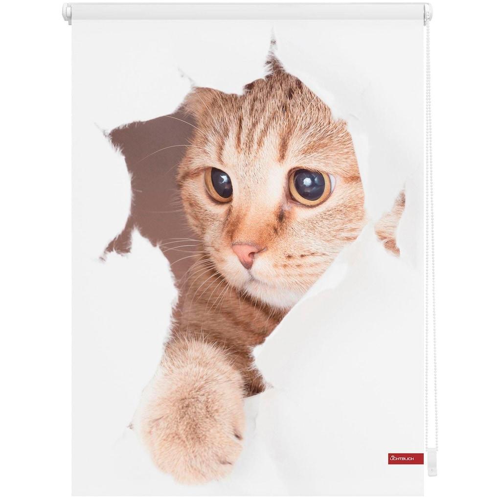 LICHTBLICK Seitenzugrollo »Klemmfix Digital Katze«, verdunkelnd, energiesparend, ohne Bohren, freihängend, bedruckt