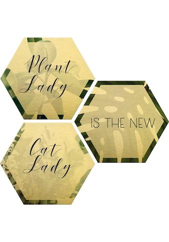 Wall-Art Alu-Dibond-Druck »Plantlady is the new Catlady«, (Set), Maße (B/H): 25/22 cm kaufen