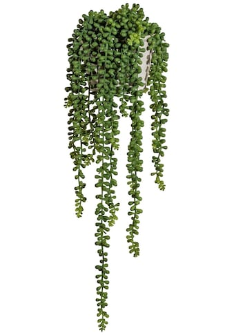 Creativ green Kunstranke »Sedumhänger« (1 Stück) kaufen