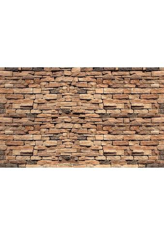 Consalnet Vliestapete »Bunte Backsteinmauer«, verschiedene Motivgrößen, für das Büro oder Wohnzimmer kaufen