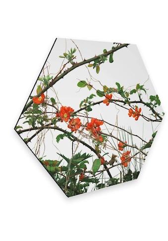 Wall-Art Metallbild »Quittenblüte Blumen Wandbild«, (1 St.) kaufen