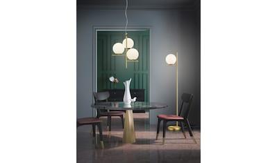 TRIO Leuchten,Pendelleuchte»PURE«, kaufen
