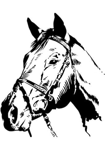 Wall-Art Wandtattoo »Pferdekopf« kaufen