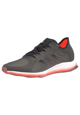 adidas Performance Laufschuh »FOCUSBREATHEIN«, kurze Distanzen kaufen