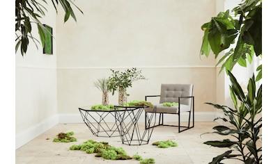 Guido Maria Kretschmer Home&Living Couchtisch »Caen«, aus Glas und Metall in geometrischen Formen, Breite 95 cm kaufen
