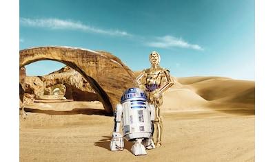 Komar Fototapete »Star Wars Lost Droids«, bedruckt-Comic, ausgezeichnet lichtbeständig kaufen