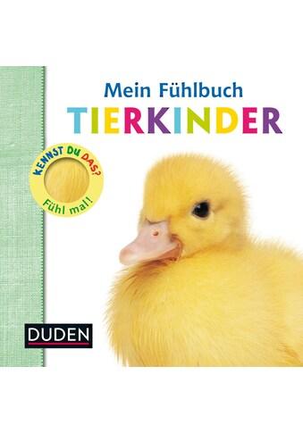 Buch »Kennst du das? Mein Fühlbuch Tierkinder / Ellie Boultwood, Hannah Cockayne, Amy Oliver« kaufen