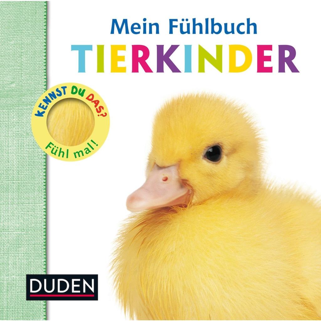 Buch »Kennst du das? Mein Fühlbuch Tierkinder / Ellie Boultwood, Hannah Cockayne, Amy Oliver«