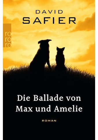 Buch Die Ballade von Max und Amelie / David Safier kaufen