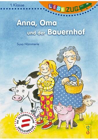 Buch »LESEZUG/1. Klasse: Anna, Oma und der Bauernhof / Susa Hämmerle, Birgit Antoni« kaufen