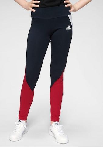 adidas Performance Leggings »GIRLS BOLD TIGHT« kaufen