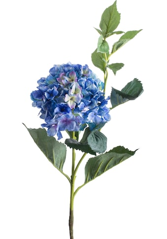 Botanic-Haus Kunstblume »Hortensie« kaufen