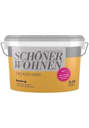 SCHÖNER WOHNEN-Kollektion Wand- und Deckenfarbe »Trendfarbe Honey, matt«, 2,5 l kaufen