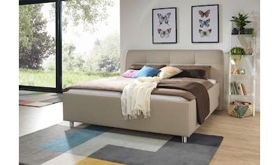 ADA trendline Polsterbett »Peggy«, wahlweise mit Matratze und Lattenrost, in verschiedenen Größen und Härtegraden kaufen