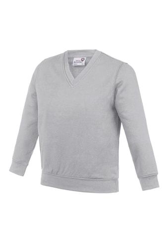 AWDIS V-Ausschnitt-Pullover »Academy Kinder Junior Schul Sweatshirt mit V-Ausschnitt« kaufen