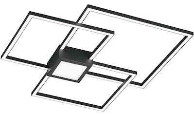 TRIO Leuchten,LED Deckenleuchte»HYDRA«, kaufen