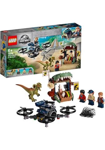 """LEGO® Konstruktionsspielsteine """"Dilophosaurus auf der Flucht (75934), LEGO® Jurassic World™"""", Kunststoff, (168 - tlg.) kaufen"""