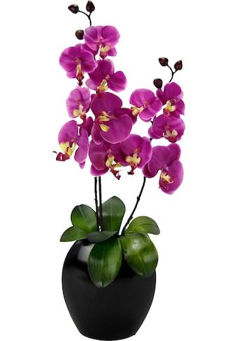 I.GE.A. Kunstpflanze »Phalaenopsis in Vase« kaufen