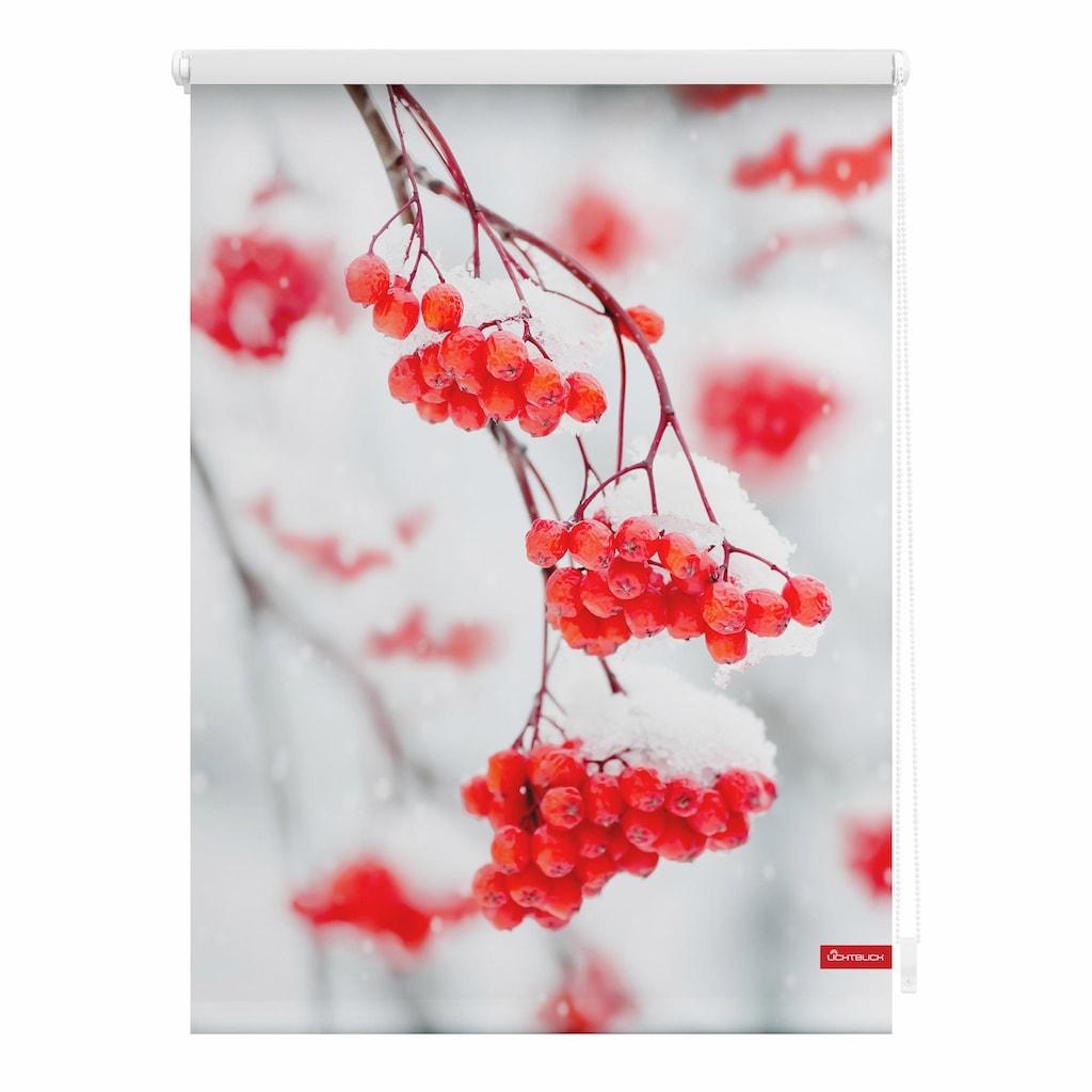 LICHTBLICK Seitenzugrollo »Klemmfix Motiv Vogelbeeren«, Lichtschutz, ohne Bohren, freihängend, bedruckt