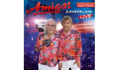 Musik-CD »Zauberland (Live 2017) / Amigos« kaufen