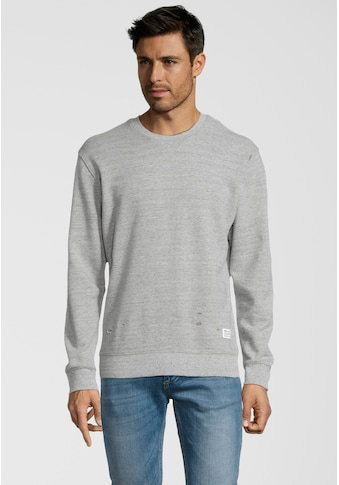 Replay Sweater »im Destroyed-Look«, mit stoffunterlegten Löchern kaufen