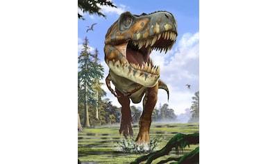Komar Fototapete »Tyrannosaurus Rex«, bedruckt-Comic-Retro-mehrfarbig, BxH: 184x248 cm kaufen