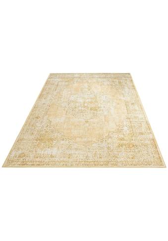 DELAVITA Teppich »Odin«, rechteckig, 6 mm Höhe, Druckteppich mit Bordüre, Wohnzimmer kaufen