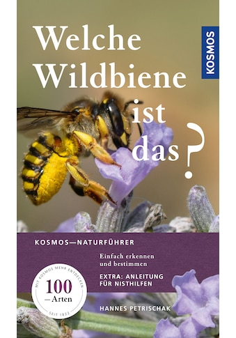 Buch »Welche Wildbiene ist das? / Hannes Petrischak« kaufen