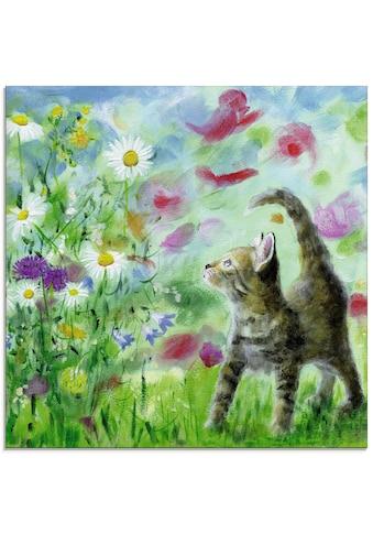 Artland Glasbild »Sommerwiese mit Kätzchen«, Haustiere, (1 St.) kaufen