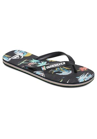 Quiksilver Sandale »Molokai Sun Damage« kaufen