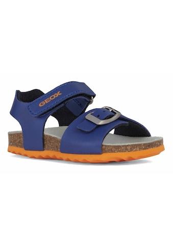 Geox Kids Sandale »CHALKI BOY«, mit patentierter Geox Spezialmembrane kaufen