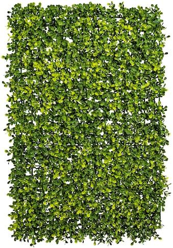 Creativ green Kunstpflanze »Buchsbaummatte« kaufen