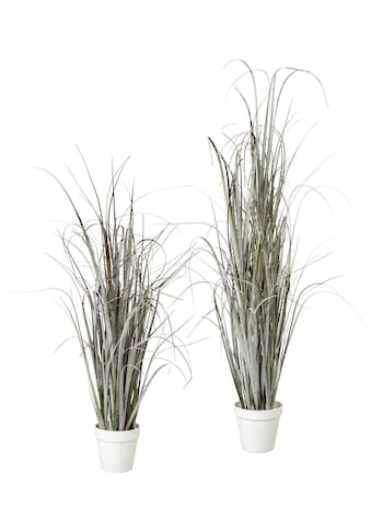 Kunstgras »im Topf« (Set, 2 Stück) kaufen