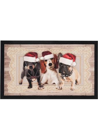 HANSE Home Fußmatte »Christmas Dogs II«, rechteckig, 7 mm Höhe, Fussabstreifer, Fussabtreter, Schmutzfangläufer, Schmutzfangmatte, Schmutzfangteppich, Schmutzmatte, Türmatte, Türvorleger, In- und Outdoor geeignet kaufen