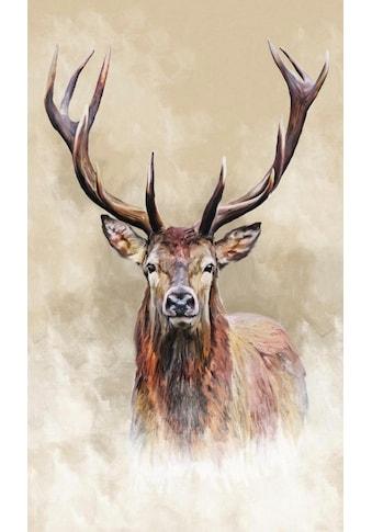 Wandbild »Hirsch« kaufen