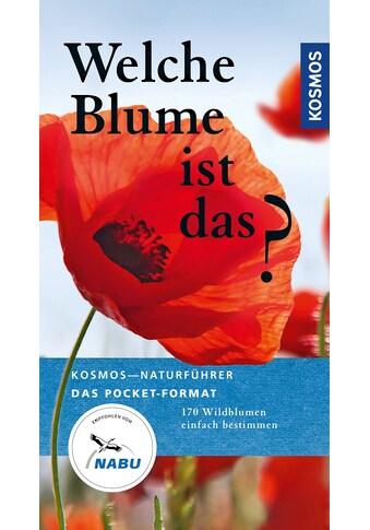 Buch »Welche Blume ist das? / Eva-Maria Dreyer, Wolfgang Dreyer« kaufen
