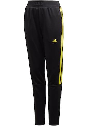 adidas Performance Trainingshose »BOYS TIRO PANT 3 STRIPES« kaufen