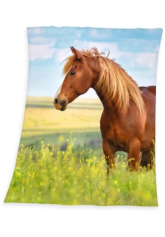 Kinderdecke »Pferd«, Herding Young Collection kaufen