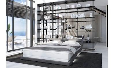 SalesFever Polsterbett, mit LED-Beleuchtung und Fernbedienung, Lounge Bett inklusive Matratze und Topper kaufen