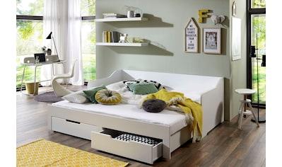 Relita Funktionsbett »Anna«, mit ausziehbarer Liegefläche und 2 Schubkästen, wahlweise... kaufen