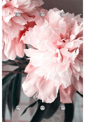 queence Garderobe »Blume« kaufen