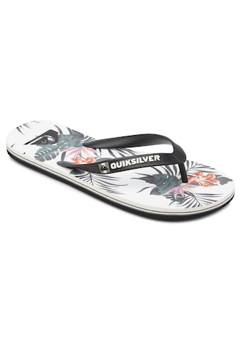 Quiksilver Sandale »Molokai Everyday Paradise« kaufen