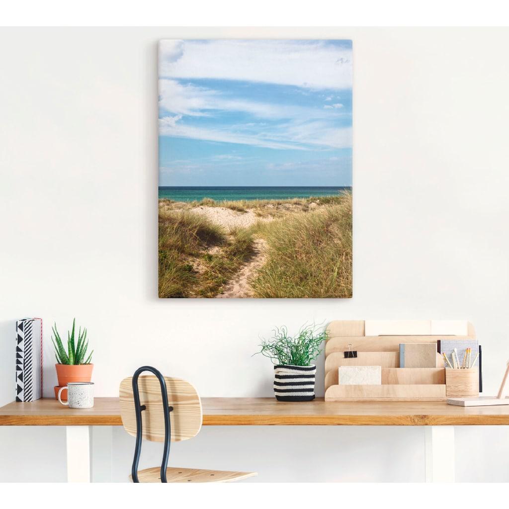 Artland Wandbild »In den Dünen Dänemarks I«, Strand, (1 St.), in vielen Größen & Produktarten - Alubild / Outdoorbild für den Außenbereich, Leinwandbild, Poster, Wandaufkleber / Wandtattoo auch für Badezimmer geeignet