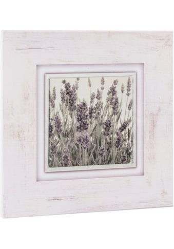 Home affaire Holzbild »Lavendel« kaufen
