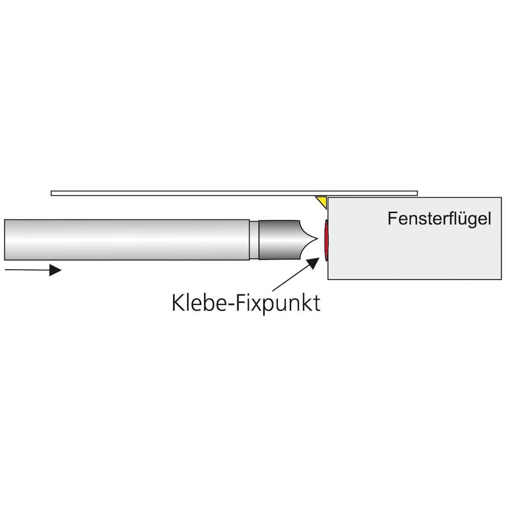 Liedeco Scheibenstange »Pinn«, 1 läufig-läufig, ausziehbar