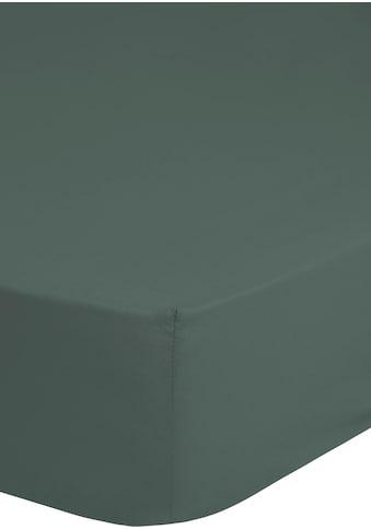 good morning Spannbettlaken »Renforcé«, bügelfrei kaufen